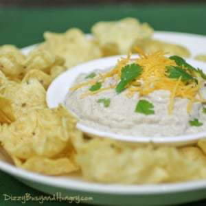 Close up shot of tortilla chips in a ring around a white bowl with chipotle cheese dip garnished with parsley and shredded cheese.
