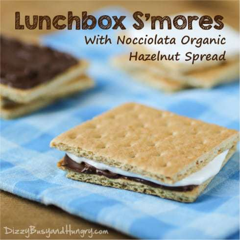 Lunchbox S'mores from DizzyBusyandHungry.com - Your kids will love brown-bagging it when they have this fun treat included in their lunch