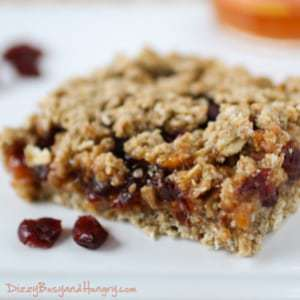 Close up shot of whole grain cranberry apricot bar on a white plate sprinkled with cranberries.