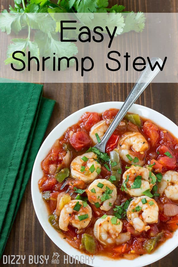overhead view of easy shrimp stew with garnish