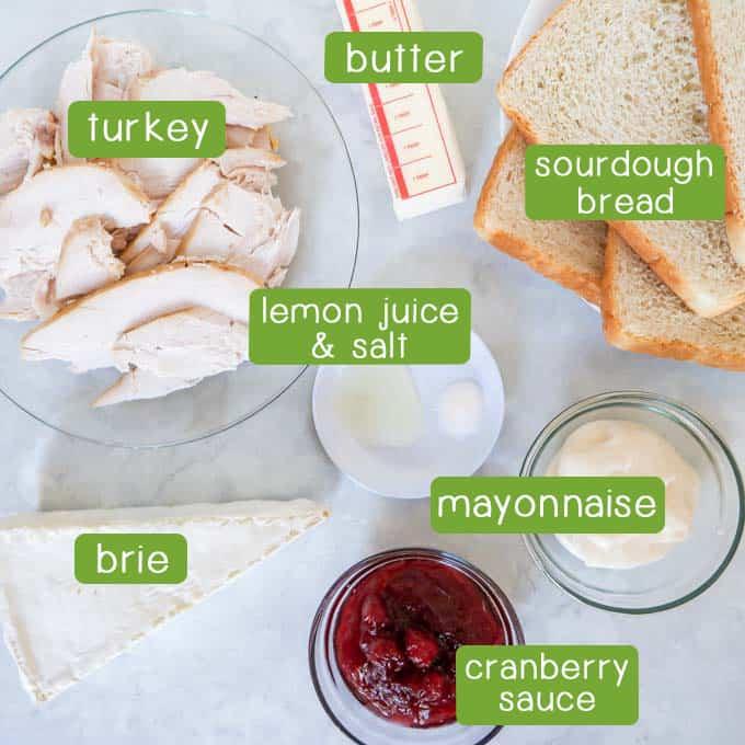Overhead shot of ingredients- turkey, butter, lemon juice, salt, sourdough bread, mayonnaise, brie, and cranberry sauce.