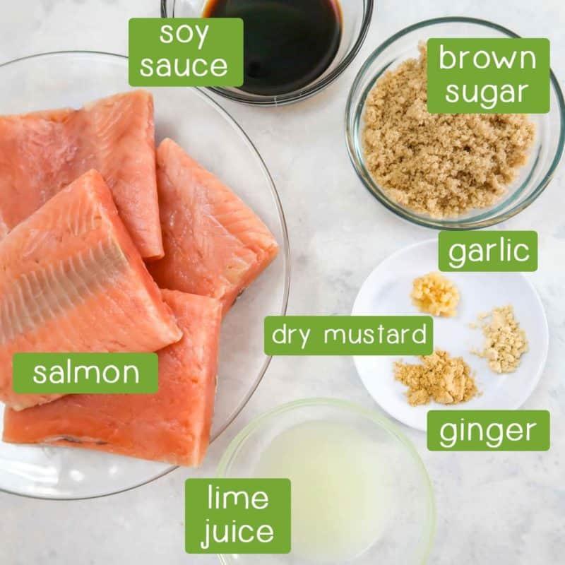 Close up shot of ingredients- Salmon, brown sugar, soy sauce, garlic, dry mustard, ginger, and lime juice.