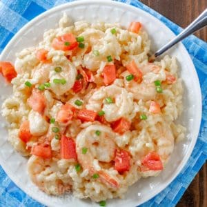 Close up shot of creamy rice and shrimp on a white plate with a spoon on a blue cloth.