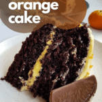 a slice of chocolate cake with orange buttercream and a chocolate orange slice, decorated with text that says