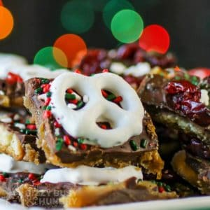 Close up shot of Christmas bark pieces on a white plate with Christmas lights in the background.