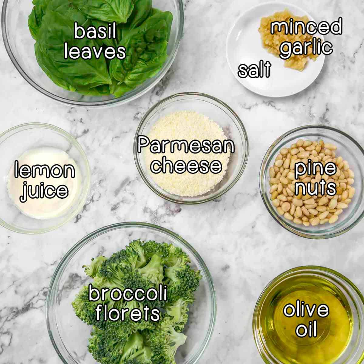 Overhead shot of ingredients- Basil leaves, minced garlic, salt, parmesan cheese, lemon juice, pine nuts, broccoli florets, and olive oil.