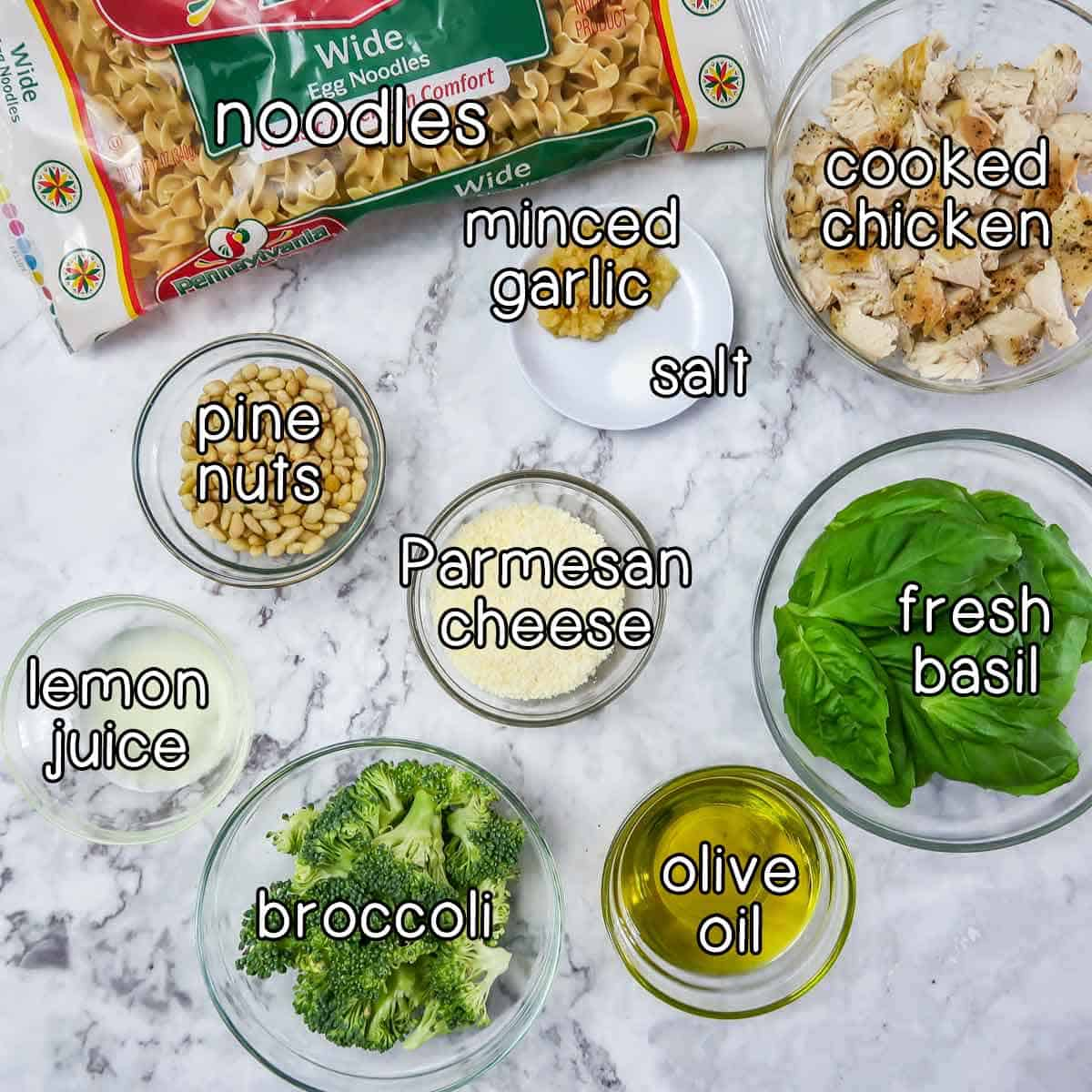 Overhead shot of ingredients- noodles, minced garlic, salt, cooked chicken, pine nuts, parmesan cheese, lemon juice, broccoli, olive oil, and fresh basil.
