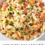 Chicken macaroni salad in a white bowl.