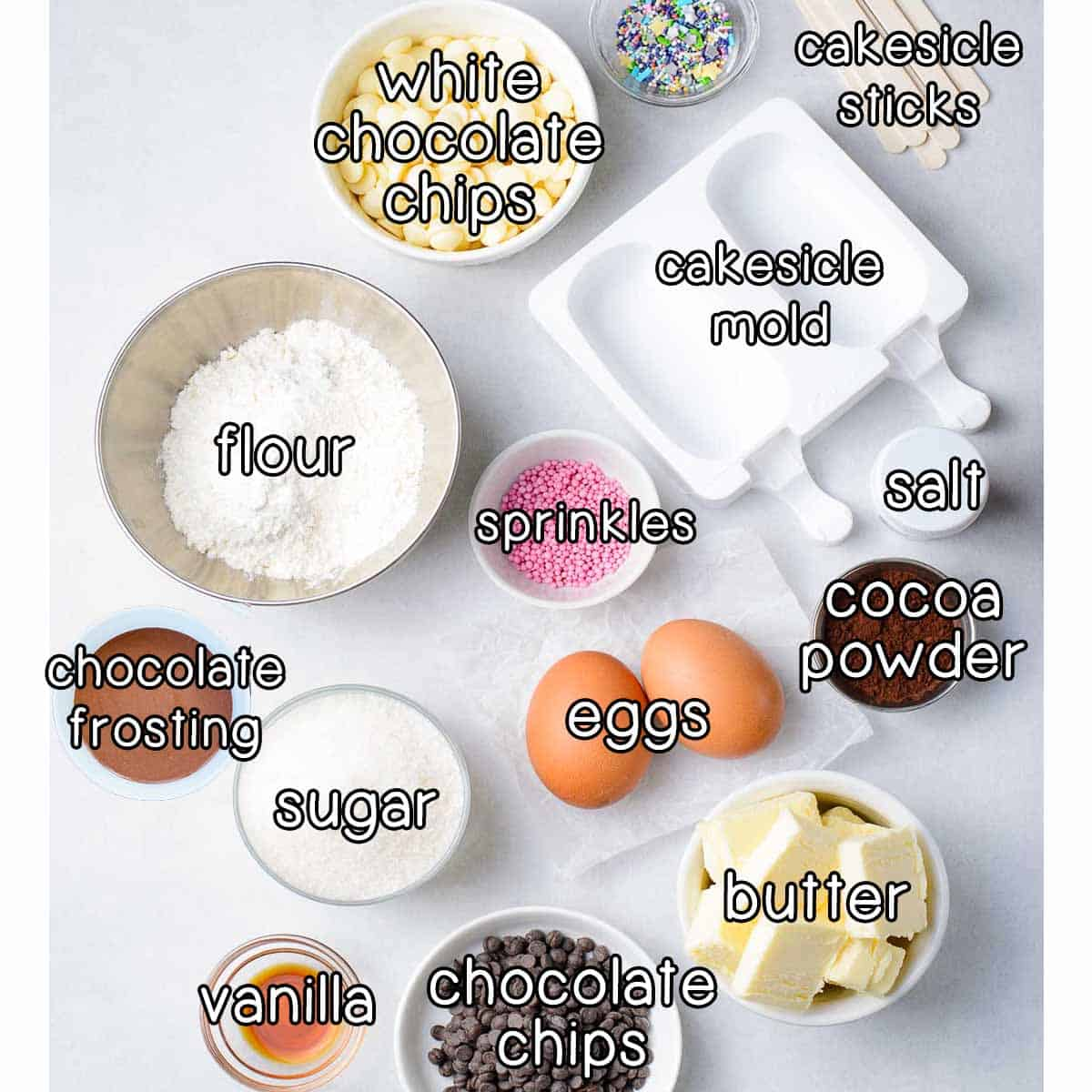 Overhead shot of ingredients- cakesicle sticks, white chocolate chips, cakesicle mold, salt, sprinkles, flour, chocolate frosting, sugar, eggs, cocoa powder, vanilla, chocolate chips, and butter.